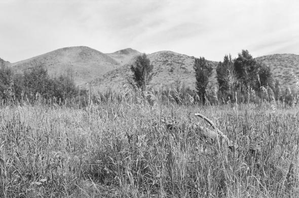 Idaho_Aug2018_167