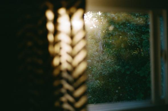 FireIsland_35mm_Sep2019_005